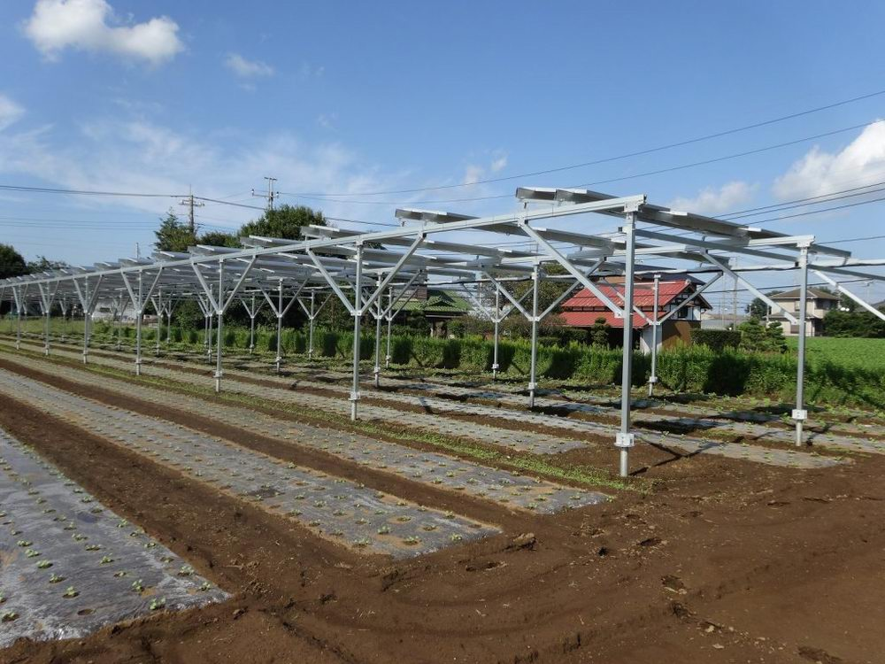 Agriculture solar shared frame structure